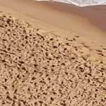 Photo of beach sand; courtesy of unsplash.com