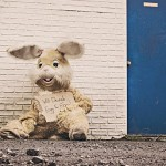Bunny costume with sign asking for money; courtesy of gratisography.com